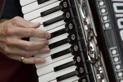 Spielen von accordeon Stockbilder