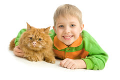 Spielerischer kleiner Junge und ernste rote Katze Stockbild