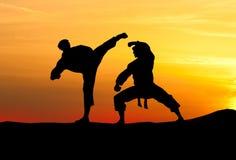 Spielerkampf gegen den Himmel. Karate. Stockbild