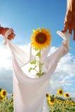 Spielidee mit Sonnenblume im Bauernhof Stockbild