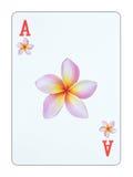 Spielkarte - Ace von Blumen Stockfotos