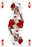 Spielkarte mit Boxerhund stockbild