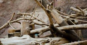 Spielplatz für Affen Stockfotografie