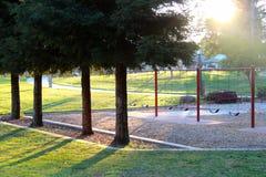 Spielplatz und Fichten Lizenzfreies Stockbild