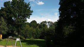 Spielplatzbäume schwingen blauen Himmel und Wolken Stockfotos
