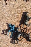 Spielwaren der Kinder unordentlich auf dem Boden Lizenzfreie Stockfotos