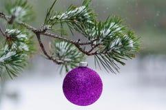 Spielzeug auf dem Weihnachtsbaum Lizenzfreies Stockbild