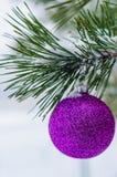 Spielzeug auf dem Weihnachtsbaum Lizenzfreie Stockbilder