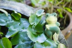Spielzeug des grünen Frosches auf Pool Lizenzfreie Stockfotos