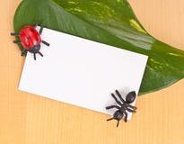 Spielzeug-Insekte mit unbelegter Karte stockbilder