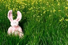 Spielzeug-Osterhase auf grünem Gras Stockfotos