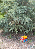Spielzeugauto unter der Kiefer Stockfotos