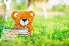 Spielzeugbär sitzt mit Bücher im Garten Lizenzfreie Stockfotos