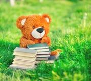 Spielzeugbär sitzt mit Bücher im Gras Stockfotos