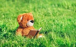 Spielzeugbär sitzt mit einem Buch im Gras Lizenzfreies Stockfoto