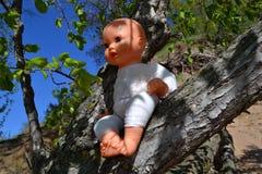 Spielzeugbaby - Puppe auf einem Baumast Lizenzfreies Stockbild