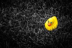 Spielzeuggummiente für ein Bad auf Schwarzweiss-Gras lizenzfreies stockfoto