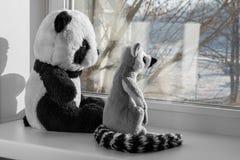 Spielzeugpanda und -Maki Stockfoto