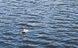 Spielzeugschiff, das auf die Oberfl?che des Sees schwimmt stockfotografie