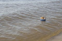 Spielzeugschiff schwimmt in Wasser Stockbild