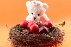 Spielzeugteddybär, der süße Kirschen sammelt Stockbild