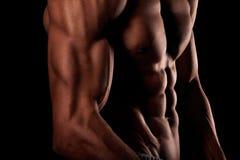 Spier mannelijk torso, zes pakkenabs stock foto's