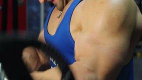 Spierbicepsen van sterke professionele bodybuilder die barbell krullen doen bij gymnastiek stock videobeelden