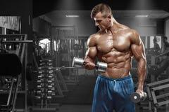 Spiermens die in gymnastiek uitwerken die oefeningen met domoren doen bij bicepsen, sterke mannelijke naakte torsoabs