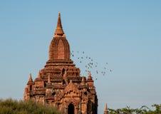 Spiers Seinnyet Nyima Paya в Bagan стоковое изображение