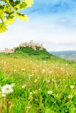 Spies castle and dandelions royalty free stock photo