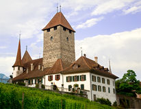 spiez Швейцария замока кантона bern Стоковые Изображения