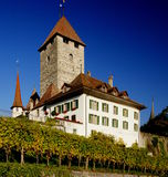 Spiez Castle. In the town of Spiez, Switzerland, on Lake Thun. The lower part of the castle keep dates back to the 10th century Stock Photo
