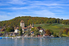 Spiez Royalty Free Stock Photography