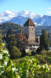 Spiez Castle, Switerland stock image