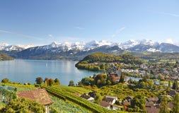 Spiez, Switzerland. Aerial view of Spiez, Switzerland Royalty Free Stock Photos