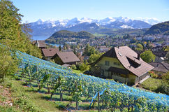 Spiez, Switzerland Royalty Free Stock Photography