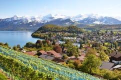 Spiez, Zwitserland royalty-vrije stock afbeelding