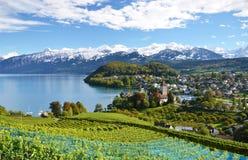 Spiez, Zwitserland stock afbeeldingen