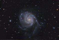spigal的星系m101 免版税库存照片