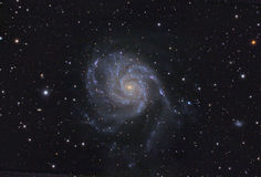 Spigal galaxy (M101 Royalty Free Stock Photo
