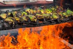 Spighe del granoturco in buccia che griglia sopra le fiamme aperte Fotografia Stock