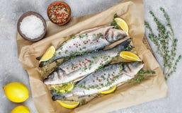 Spigola fresca del pesce crudo Fotografie Stock Libere da Diritti