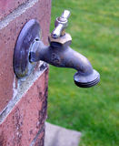 Spigot. Water spigot on the corner of a brick wall, with blurred grass in the background Stock Image