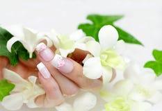 Spijker en orchidee stock afbeelding