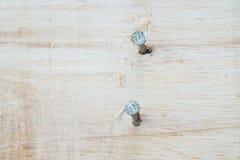Spijker in houten plank stock afbeelding