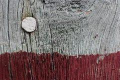 Spijker in muur Stock Afbeelding