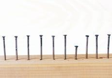 Spijkers in houten plank. stock fotografie