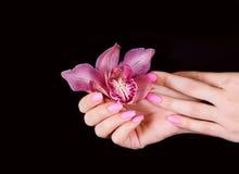Spijkers met bloem stock foto's