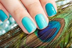 Spijkers met manicure en pauwveer Royalty-vrije Stock Afbeelding