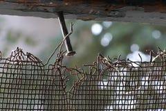 Spika i trät med det rostade staketet Arkivbild